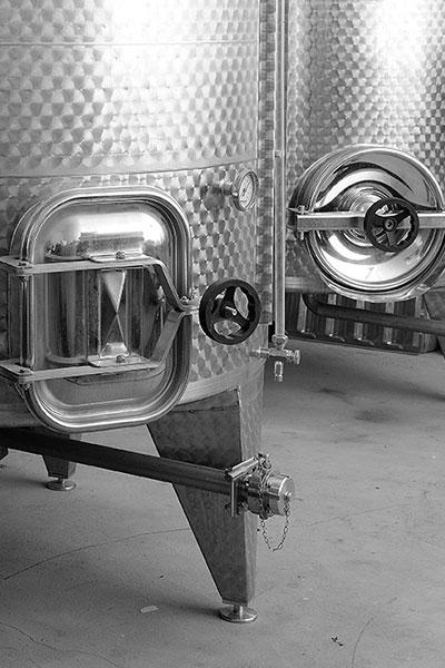 photos vignes et cépages des cotes du Rhône - Domaine de l'Odylée