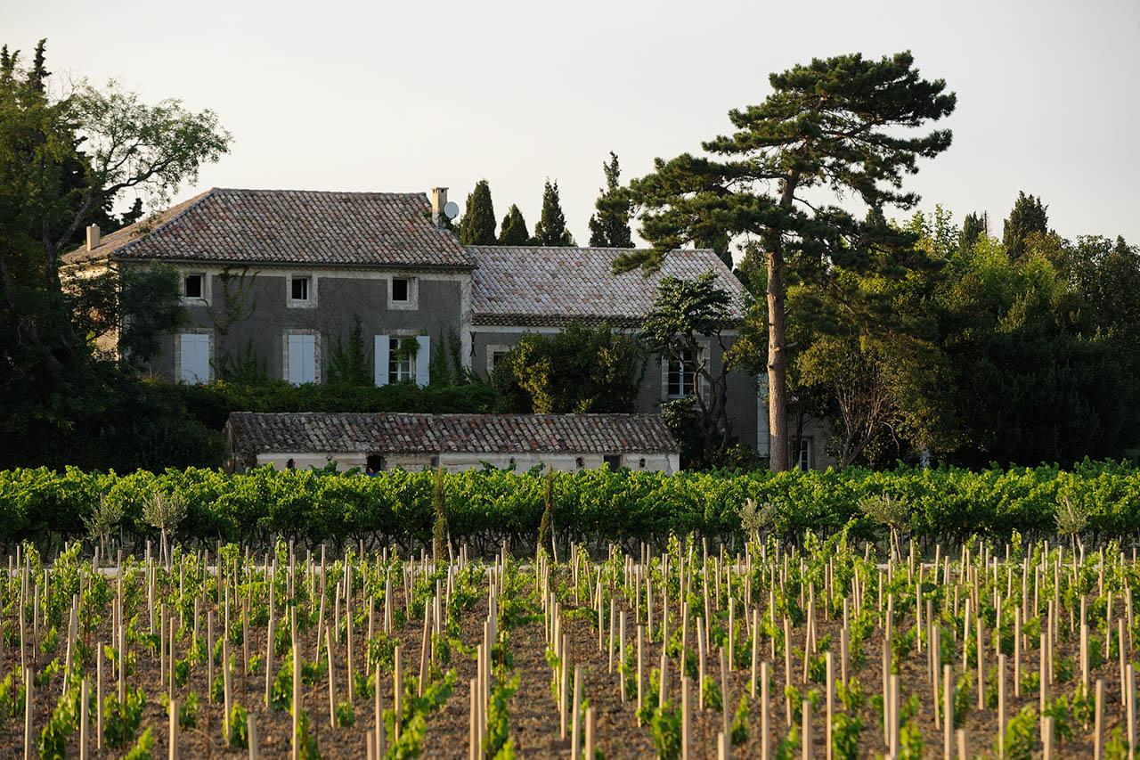 Plantation au domaine de l 39 odyl e l 39 odyl e domaine - Chambre d hote dentelles de montmirail ...