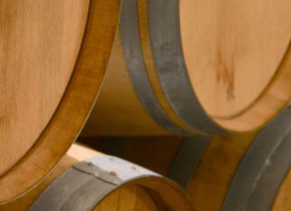 Les vins de l'Odylée à Plan de Dieu