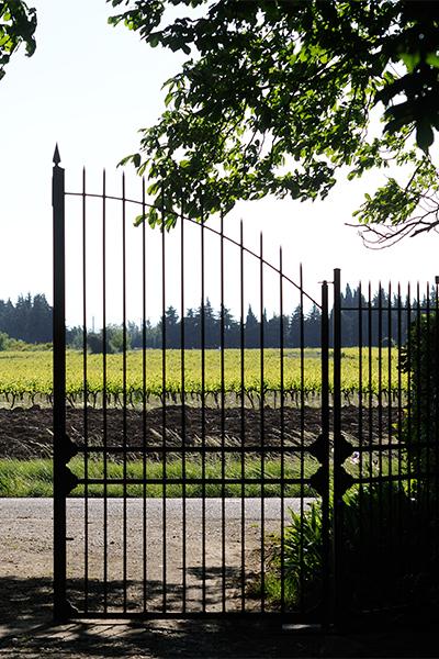 Portail fer forgé maison d'hôtes en Provence domaine de l'Odylée