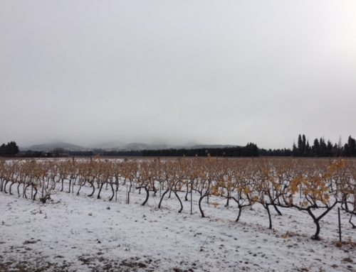 Neige au Domaine de l'Odylée